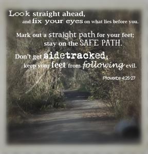 proverbs 4 25 27